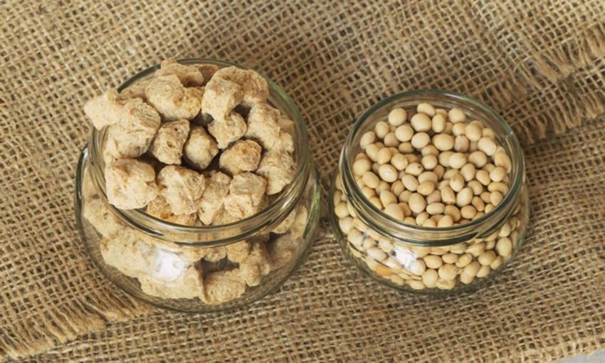 การรับประทาน โปรตีนเกษตร