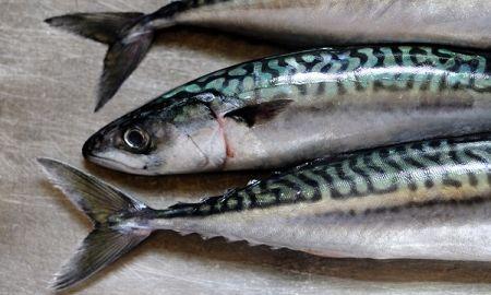 อาหารที่คนตั้งครรภ์ ไม่ควรทาน-ปลาเล็กและปลาทะเลบางชนิด