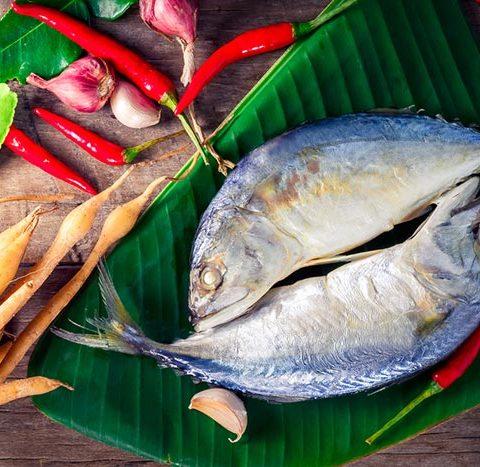 ประโยชน์จากปลาทู