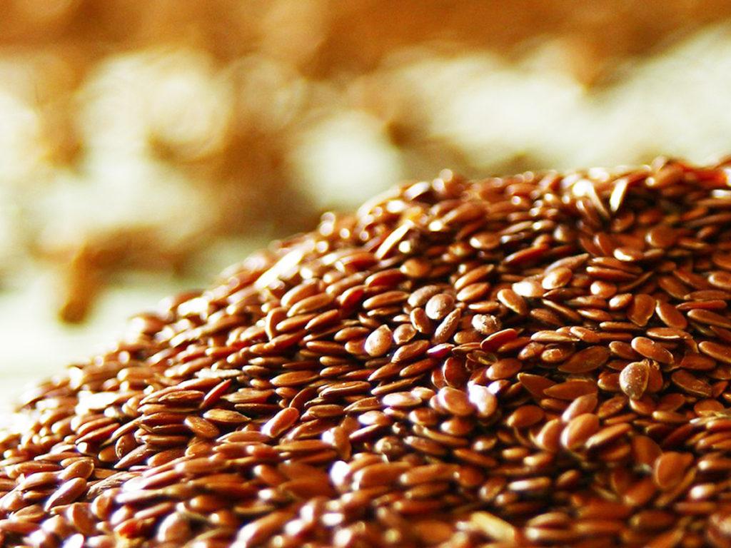 ประโยชน์ดี ๆ จากเมล็ดแฟลกซ์ อุดมไปด้วยแร่ธาตุและวิตามิน